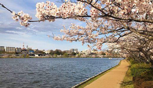 【水戸市】千波公園テニスコート